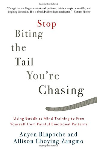 Stop Biting the Tail You're Chasing: Using Buddhist Mind Training to Free Yourself from Painful Emotional Patterns