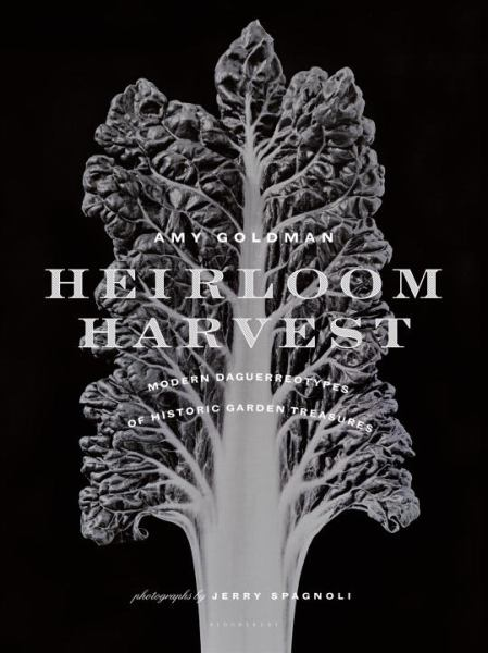 Heirloom Harvest:  Modern Daguerreotypes of Historic Garden Treasures