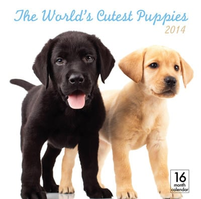 The World's Cutest Puppies Wall Calendar 2014