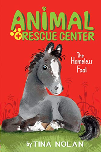 The Homeless Foal (Animal Rescue Center)