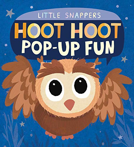 Hoot Hoot Pop-up Fun (Little Snappers)