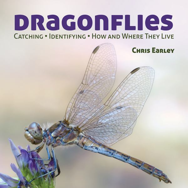 Dragonflies: Caching, Identifying, How and Where  They Live
