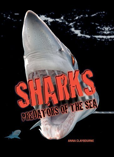 Sharks: Predators of the Sea