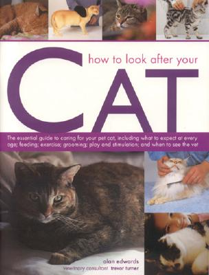 How to Look After Your Cat