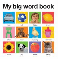 My Big Word Book 9780312513733