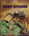 Sneaky, Spinning Baby Spiders 9780802796974