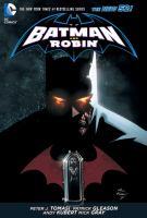 The Hunt for Robin (Batman and Robin, Vol. 6) 9781401253349