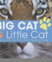 Big Cat, Little Cat 9781408164013